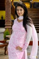 Adhinayakudu hot stills (5)