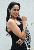 Pragya Jaiswal Actress Photos