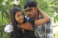 Bandham Telugu Movie Photos Stills