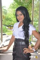 Rachana Mourya New Stills (11)