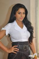 Rachana Mourya New Stills (13)