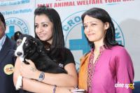 Trisha @ Blue Cross Building Launch Photos