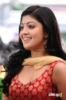 Saguni Movie Photos (8)