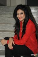 Zara Telugu actress photos pics