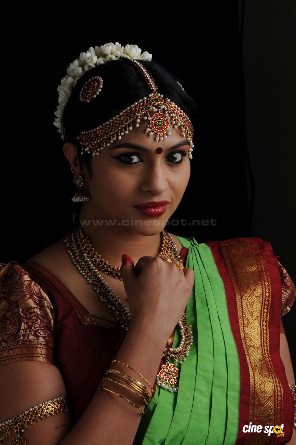 Lakshmi Nair Actress Photos (4)