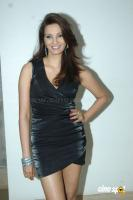 Diana Hayden Actress Photos Stills