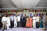 Kasiviswanath Son  reception photos (16)