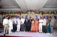 Kasiviswanath Son  reception photos (17)