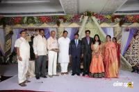 Kasiviswanath Son  reception photos (20)