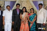 Kasiviswanath Son  reception photos (28)