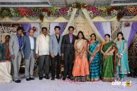 Kasiviswanath Son  reception photos (30)