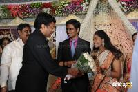 Kasiviswanath Son  reception photos (31)