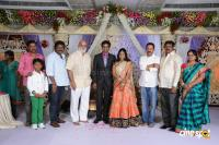 Kasiviswanath Son  reception photos (33)