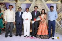 Kasiviswanath Son  reception photos (4)