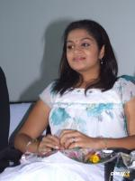 Palaivana Cholai Audio Launch Photos (17)