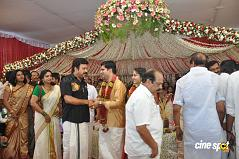 actress  Navya Nair Marriage Photos Wedding Photos (22)