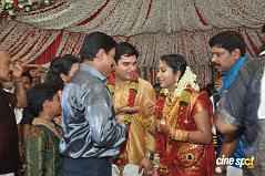 actress  Navya Nair Marriage Photos Wedding Photos (31)