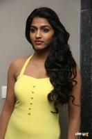 Dhansika at WE Awards 2013 (6)