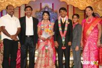 Raj TV MD Daughter Marriage Reception (17)
