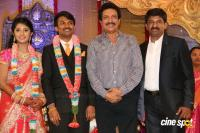 Raj TV MD Daughter Marriage Reception (18)