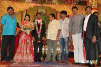 Raj TV MD Daughter Marriage Reception (2)
