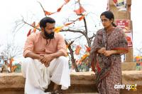 Tiyaan Photos (18)