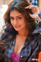 Payal Rajput Photoshoot (9)