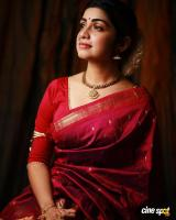 Actress Manasa Radhakrishnan Photos (14)